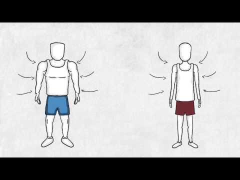 Fast twitch vs Slow twitch muscle fibers