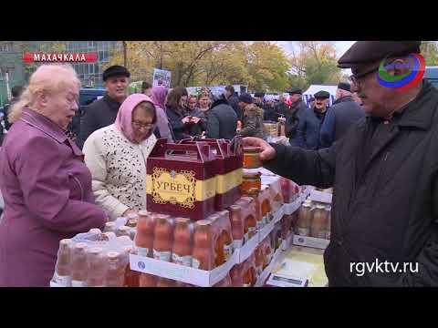 Владимир Васильев посетил самую крупную в этом сезоне продуктовую ярмарку
