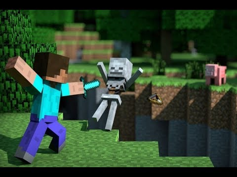 Fighting The ENDER DRAGON