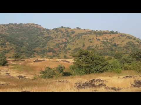 100 Acres Agriculture land for sale Velhe,Pune.