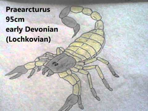 My drawings, Episode I part 4 : Devonian