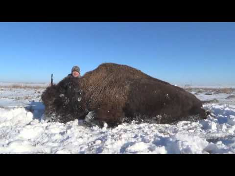 Buffalo Hunting SD with Allen and his 45-70