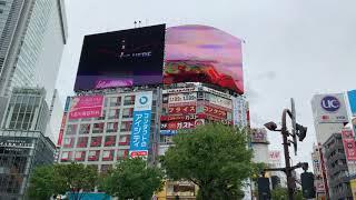 渋谷の街 / City of Shibuya, Tokyo thumbnail