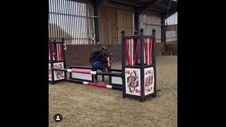 Horse fails 5