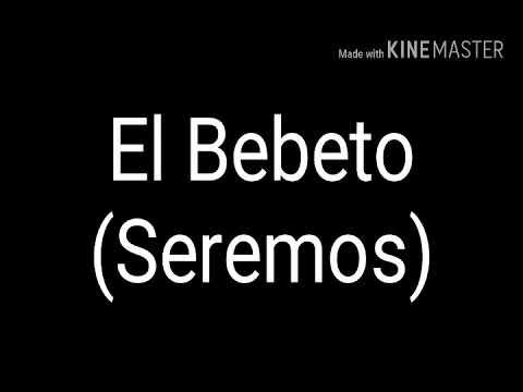 El Bebeto (Seremos) Letra