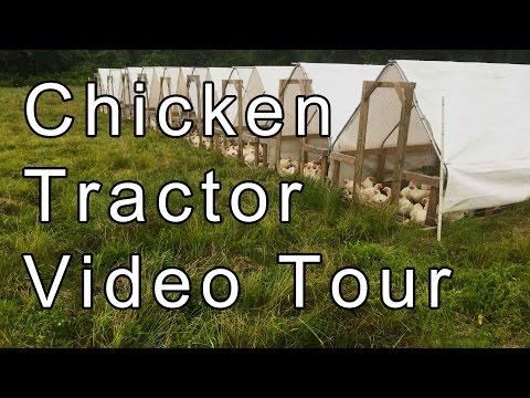 Chicken Tractor Video Tour