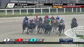 Vidéo de la course PMU PREMIO IMPERRITO (2013)