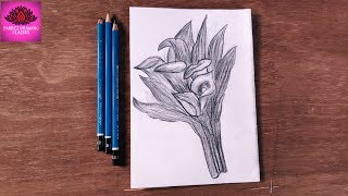 how to draw beautiful cally lily flower with  pencil shading (easy steps)