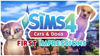 🐱THE SIMS 4 CATS & DOGS || FIRST IMPRESSIONS || NEW WORLD & VET CAREER [PICTURES] 🐶