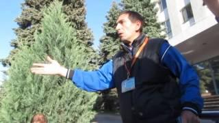 Уроки этики от пророссийского активиста в Луганске