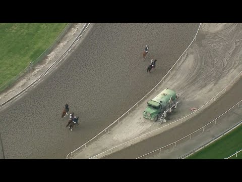 Horses Train At Santa Anita Amid Investigation Into Track Conditions