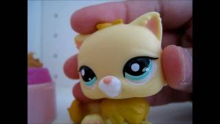 "LPS: The Circle of Witches (Episode 1) ""A New Town, A New Life"""