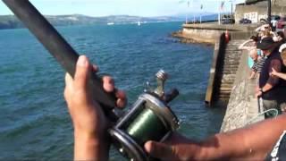 Extreme Kingfish Hunting - LBG Fishing In Wellington New Zealand - Man vs Wild Fishing