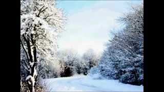 サガユウキ - 初雪