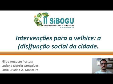 intervenções-para-a-velhice:-a-(dis)função-social-da-cidade.