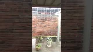 Video: Granizó en Salvador Mazza