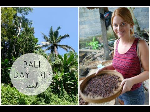 Bali FMA - Ubud Day Trip- Jungle Temple, Coffee Farm...