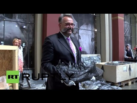 Germany: 66 million year old T-REX goes on show at Berlin Natural History Museum