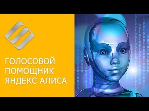 Как скачать и установить голосовой помощник Яндекс Алиса на Windows ПК, Android, IOS 🤖🌐💻