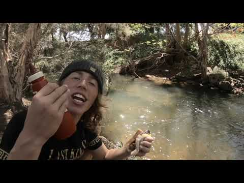 Cobbler Catch & Cook // Living The Farm Life EP1