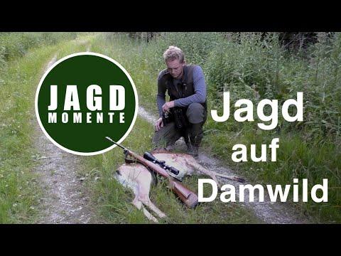JagdMomente  Folge 3  Jagd auf Damwild und Reh im Frühsommer