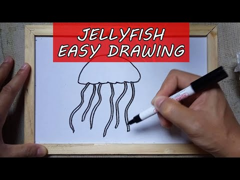 How To Draw A Jellyfish Sketch Step By Step – Easy Jellyfish Drawing Outline Tutorial For Beginners