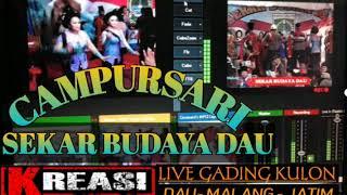 SEKAR BUDAYA DAU-CAMPURSARI TAYUB-TERBARU-LIVE GADINGKULON DAU MALANG