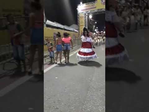 Canal do tyrol para o mundo: ala do BLOCO Império da vila Santo Antônio, em 04 de março de 2019.