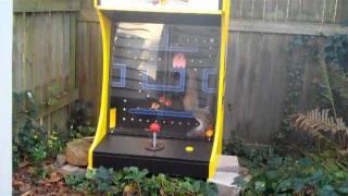 Pac-man Squirrel Feeder
