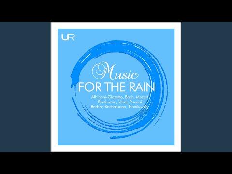 Piano Concerto No. 1 in B-Flat Major, Op. 23, TH 55: II. Andantino semplice