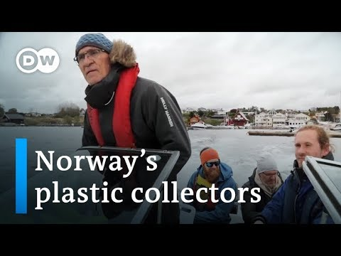 Norway: A whale's death moves a nation to fight plastic waste | Focus on Europe