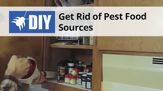 Get Rid of Roach Food Sources