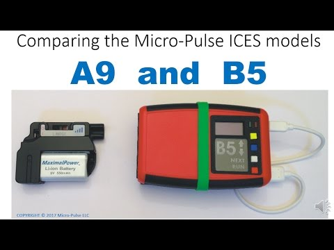 A9 and B5 Comparison: Which ICES Model is Right for You?