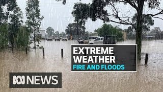 Massive clean-up underway after wild storms across country's south east | ABC News