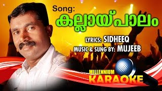 Kallai Paalam Karaoke With Lyrics | Malayalam Album Song Karaoke With Lyrics