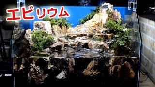 エビのテラリウム水槽「細部仕上げ」【苔リウム立ち上げpart4】