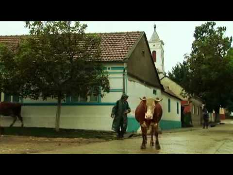 Ostrov svaté Heleny (2010) - ukázka