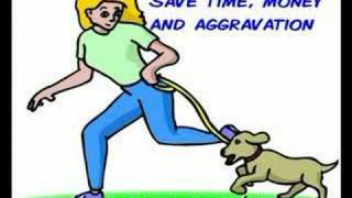 Dog Obedience Training Secrets