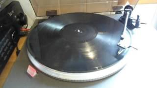 Donna Summer - She Works Hard For The Money (Vinyl)
