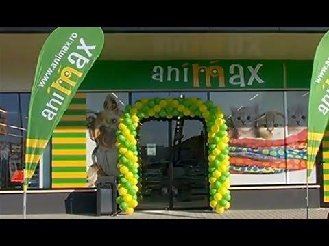 Animax Alexandria - Primul magazin Animax in regim de franciza