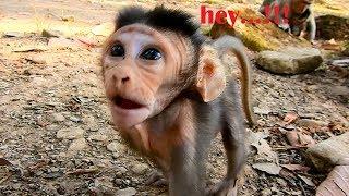So cute.!!Baby David open big eyes&raise hair up wonder what Cameraman doing,David try talk&ask ask