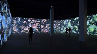 永利澳門 Wynn Macau|《賽倫斯 ‧ 杜古德》:藝術投影 Silence Dogood: A Projection of Creation