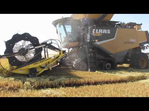 medium-grain-rice-harvest-in-butte-county