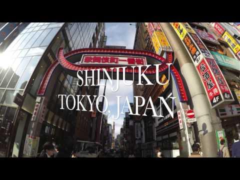 Shinjuku, Ochanomizu, Ginza