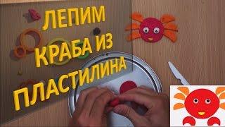 Лепим КРАБА из пластилина| Лепка животных из пластилина