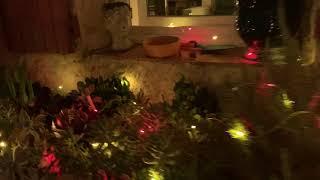 Fil lumineux extérieur animé 18m, 180 micro LED multicolores vidéo