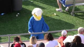 Armwood High School Hawks Mascot Dances To Party Rock Anthem LMFAO
