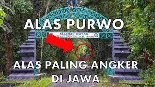 Misteri Alas Purwo Banyuwangi, Hutan Paling Angker di Jawa