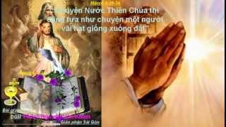 Dụ Ngôn Hạt Cải _ Bài giảng của ĐGM. Phêrô Nguyễn Văn Khảm
