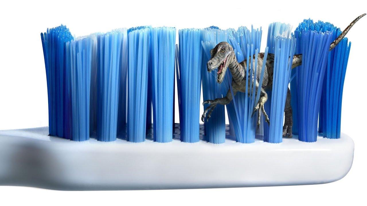 Que pasa con nuestro cepillo de dientes despùes de tres meses de uso ... f2a51d56fb11